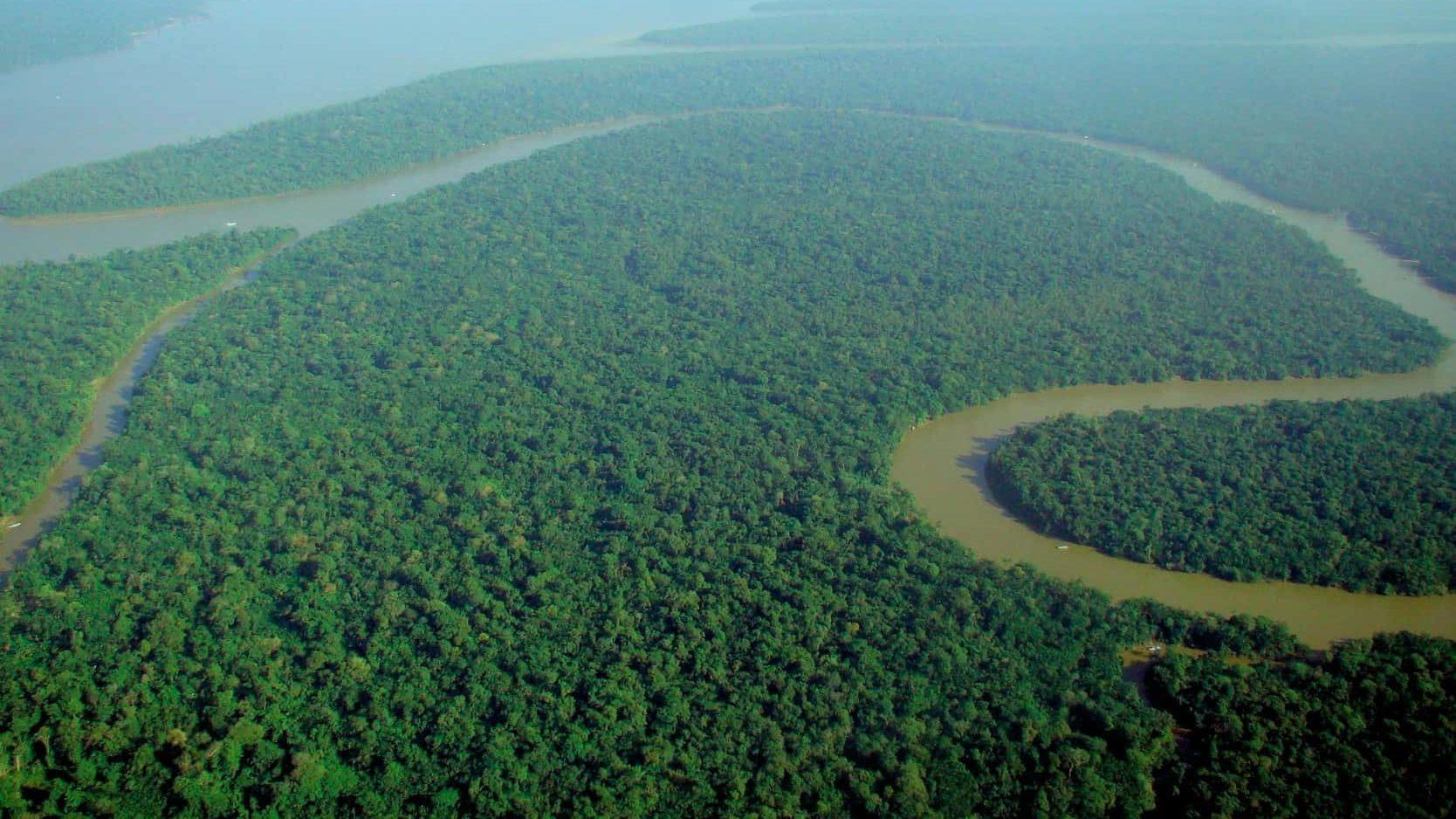Amazonsko pleme pobijedilo u parnici za očuvanjem pola milijuna hektara prašume