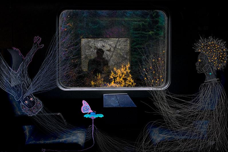 Rasadnik - digitalni krajolik